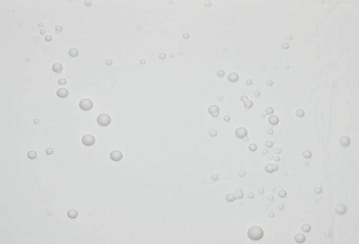 Как разводить шпаклевку: нужная консистенция превыше всего