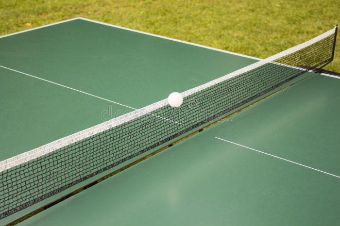 Как сделать теннисный стол: лучшая конструкция для настроения и здоровья