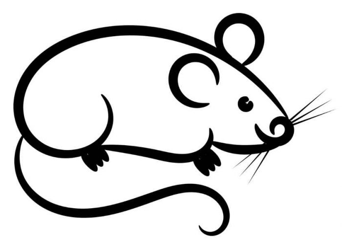 Трафареты на окна на Новый год 2020: крыски или мышки, снежинки и компания