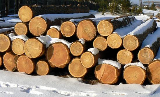 Советы по строительству деревянного дома: нюансы, которые нужно учесть