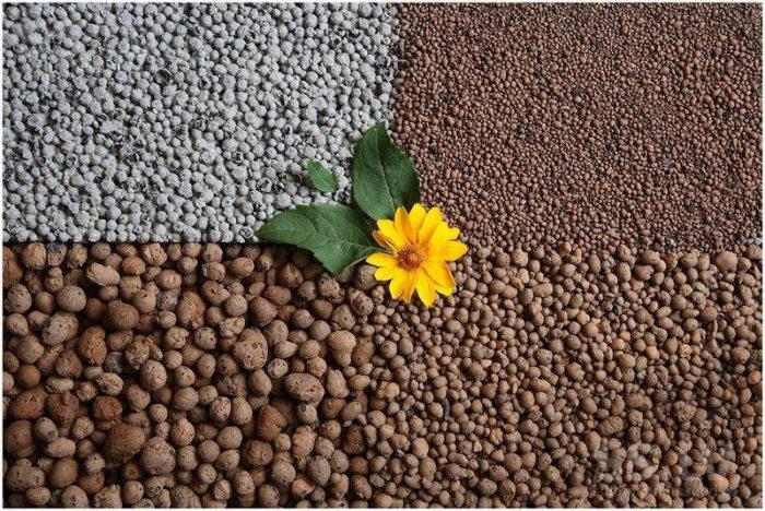 Дренаж для цветов из подручных средств: что спасет растения от влаги