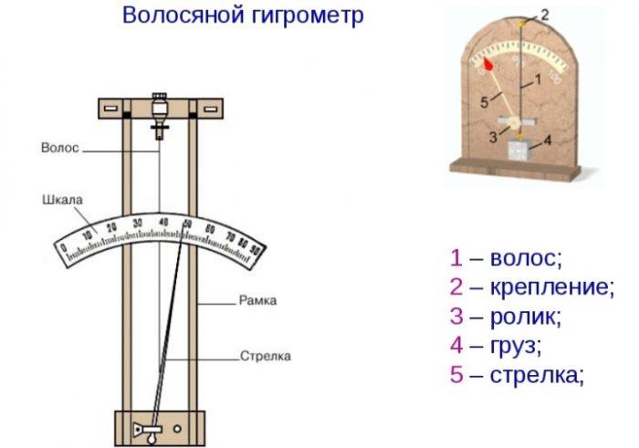 Какая влажность воздуха должна быть в квартире: каждой комнате — свой показатель