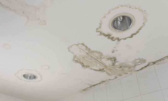 Что делать, если затопили соседи сверху: куда обращаться, как возместить ущерб?