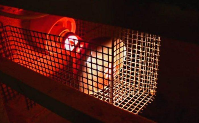 Как сделать курятник: создание «птичьего стационара» и мобильной конструкции