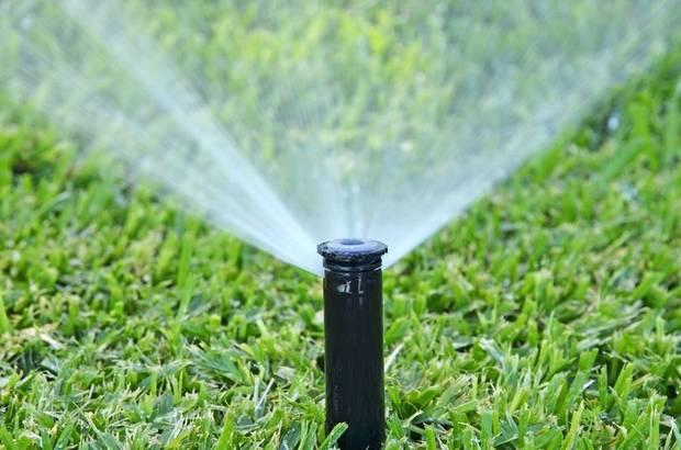 Как сделать полив огорода своими руками: разные виды систем и их создание