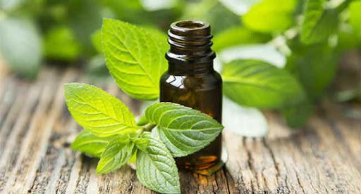 Как избавиться от запаха краски: простейшие способы устранения «аромата»