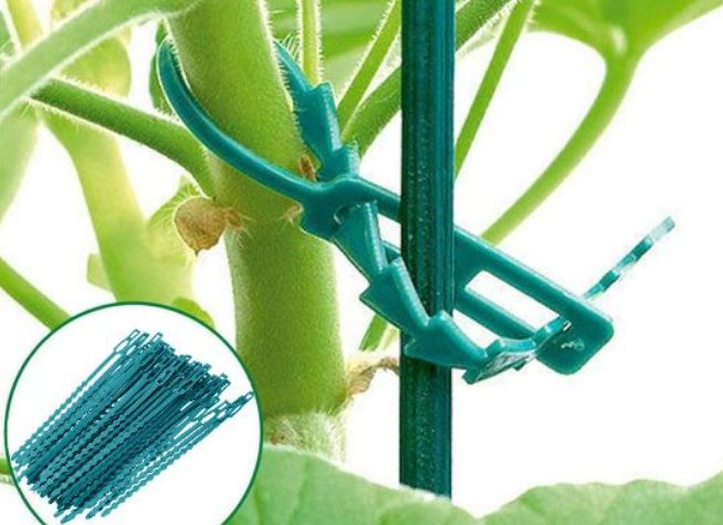 Шпалера для огурцов своими руками: материалы, виды конструкций и их изготовление