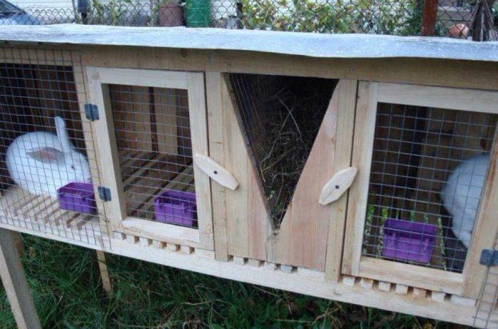 Как сделать клетку для кроликов: нужные элементы и виды «звериного» жилья