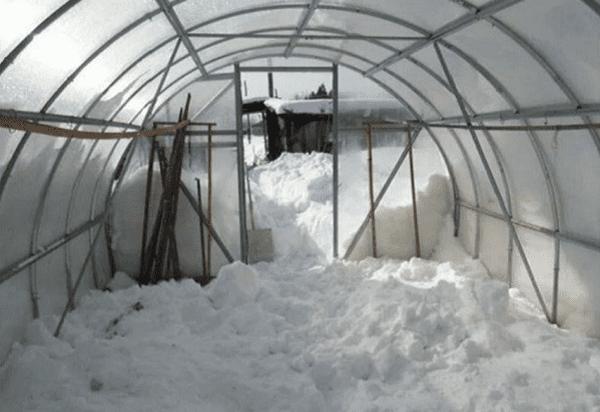 Как обработать теплицу весной: все способы подготовки «объекта» к новому сезону