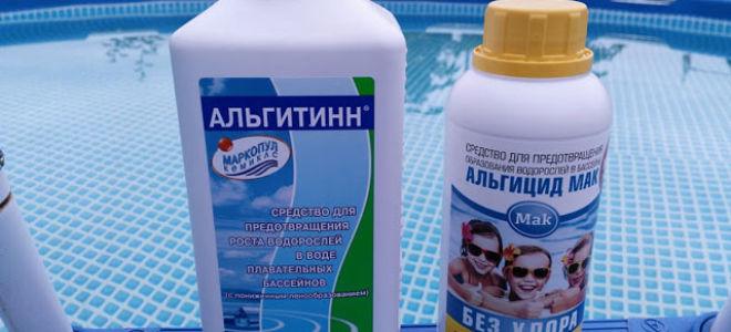 Как очистить бассейн: методы, фильтры, устройства и безопасные препараты