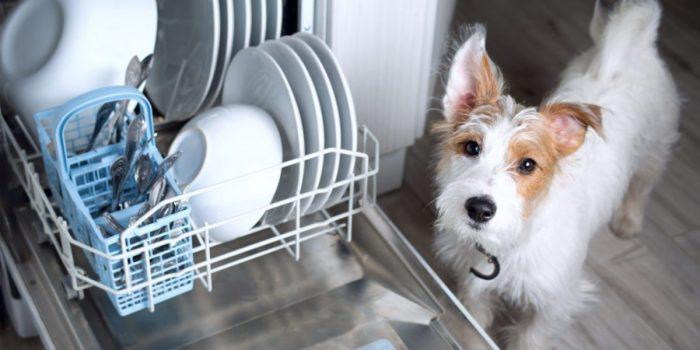 Как выбрать посудомоечную встраиваемую машину: важные критерии и функции
