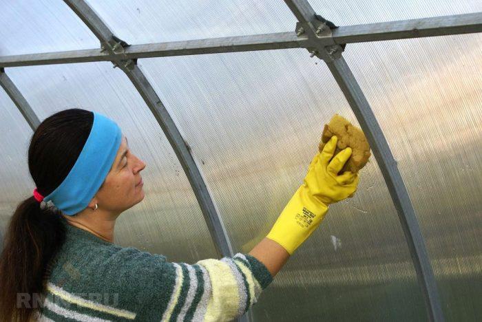 Как подготовить теплицу к зиме правильно: осенняя борьба за будущий урожай