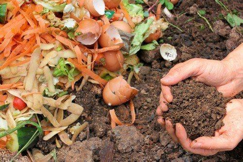 Как подготовить почву осенью для посадки: важнейшие этапы предзимней работы